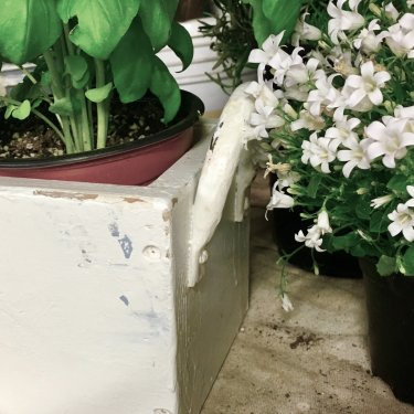 Hand Painted Flower Box
